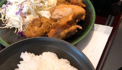たっぷりの鶏唐揚が嬉しい「地鶏道大はし」