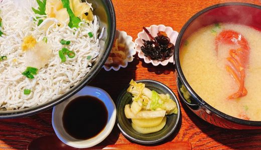 江ノ島でしらすが食べたかったけど禁漁期間だった「しらすと伊勢海老の忠兵衛」